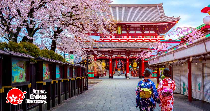 CHERRY BLOSSOM IN JAPAN | Smart Family vacations